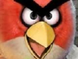 В этой игре Вы будите иметь дело со злыми птицами. Точнее с их фотографиями. На фото тщательно замаскированы звездочки. Ваша задача найти их все. Причем сделать это нужно за ограниченный промежуток времени.