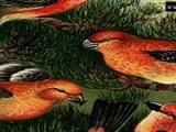 Соберите как можно быстрее кусочки рассыпавшегося пазла и перед Вам появятся забавные птички.