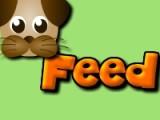 Покормите собачку! Соберите за минимальное время максимальное количество вкусной еды!