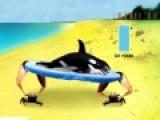 Попробуйте пройти уровни про касатку, которой надоело плавать в океане. Цель игры помочь касатке как можно дальше запрыгнуть на сушу. Используйте пробел, что бы выбирать угол и силу прыжка.