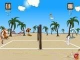 Пляжный волейбол с зайцами. Постарайтесь не проиграть своему Бурому оппоненту. Это не так-то и просто, ведь мячик летит быстро, а по песочку бегать не очень удобно.