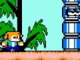 Данная игра представляет собой подборку игр платформеров, которые графикой, музыкальным сопровождением очень похожи на первые пиксельные игры. Управляйте персонажами при помощи стрелок. Используйте кнопки A и S, что бы стрелять и перепрыгивать препятствия.