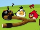 В этой игре Злые птицы бросили свою огромную рогатку и пошли искать золотые яйца и убивать свинок. Твоя задача помочь им выполнить эту миссию. Красочная бродилка с простым управлением, которое осуществляется при помощи стрелок, порадует любого игромана.