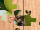 Задача этой игры очень проста. Поставьте все кусочки пазла на свое место и перед вами появится изображение великолепных фруктов. Чем больше пазлов вы соберете тем большим количеством картин сможете насладиться.