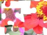 Соберите кусочки картинки воедино, и получите изображения с великолепными цветами и букетами.