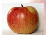 Выберите одну из фотографий сочных яблок. Затем выберите сложность. И приступайте. Вам придется собрать все кусочки рассыпавшегося пазла, что бы восстановить картинку которую Вы изначально выбрали. Сделайте это как можно быстрее.