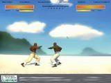 Потрясающая по красоте для флэш графика и анимация! Движения бойцов мне чем-то напомнило игру Tekken, если кто помнит, такая была на PlayStation. В общем, очень достойная игра!