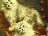 Внимательно посмотрите на картинку с красивенькими пушистыми котятами, и запомните ее как можно лучше. Затем выберите на сколько кусочков рассыпется этот пазл. После этого приступайте к игре и постарайтесь как можно быстрее восстановить картинку.