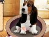 Решили завести собаку но не знаете какую породу выбрать. Пройдите этот не сложный тест и узнаете, какая именно порода собаки подходит именно вам.