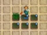 Отличная яркая и увлекательная игра для тех, кто любит фермерство и все, что с ним связано. В этой экономической стратегии Вам предстоит выращивать урожай и заводить животных. Делать все, что бы Ваша Чудо Ферма развивалась и приносила доход.