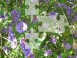 Предлагаем Вашему вниманию еще одну настольную игру из серии пазлов.  Ваша задача собрать рассыпавшиеся кусочки картинки. Если это Вам удастся, то вы увидите великолепное фото с прекрасными цветами.
