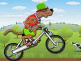 Кто сказал, что собаки не умеют кататься на велосипеде? Герой известного мультфильма, пёс Скуби Ду, решил освоить езду на этом виде транспорта. Вам нужно помочь ему успешно пройти все семь треков и съесть как можно больше куриных ножек!