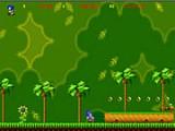 В этой игре ёжик Соник бегает и прыгает по платформам, побеждает гусениц и собирает золотые колечки, совершая экстремальные прыжки!