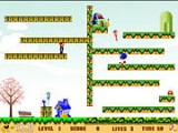 В этой игре Вы одновременно управляете Соником и Марио. Подбирайте ключи и выходите на новые уровни игры, также не забывайте про время, оно ограничено!