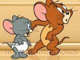 В главном меню вам необходимо выбрать, за кого будете играть - за мышку Джерри или за кота Тома. В зависимости от выбранной роли, вам предстоит или бросаться разными фруктами в убегающих мышей, или воровать еду из холодильника.