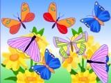 Найди пару бабочкам и постарайся раскрасить их одинаково!