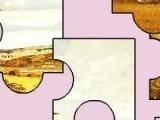 Ваша задача в данной игре - собрать из пазлов картинку, на которой изображены утки.