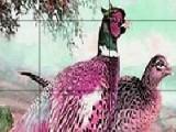 Внимательно посмотрите и запомните изображение с лесными птицами. Через мгновение все кусочки перемешаются. И вы должны будете передвигая кусочки картины все восстановить.