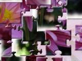 В данном случае вам предстоит собрать кусочки пазла в прекрасную картину,на которой изображен букет с хризантемами.