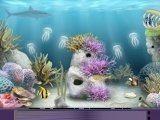 Непонятно как вы оказались под водой. Среди акул, крабов и прочих обитателей рифа. Нужно выбираться, собирая и комбинируя всевозможные предметы.