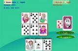 Играть могут от 2-х до 4-х игроков, при этом один из игроков обязательно пользователь, а остальные игроки компьютерные. Возможны варианты игры в простого (подкидного) дурака, или в переводного (смотри Настройки).