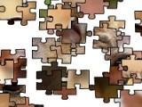 Цель этой игры собрать целую картинку из кусочков перепутанного пазла. Можно играть на время, а можно и нет. Главное, что бы результатом Ваших трудов получилось правильное изображение.