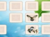 Перед Вами еще одна игра из серии развивающих память игр. Вам предстоит очистить игровое поле от перевернутых картинок. Для этого необходимо открывать картинки с одинаковыми изображениями зверюшек.