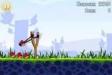 Флеш версия знаменитой физической игры. Запускаем птиц из рогатки для уничтожения свиней и построенных ими крепостей.