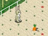 Помогите маленькому зайчику собрать морковку на поле и попасть домой. Он может перепрыгивать только через четыре грядки. Потому прояви логическое мышление, что бы помочь зайчику.