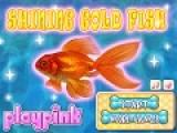Создайте свой аквариум и постарайтесь как можно лучше заботиться о своей маленькой золотой рыбке.